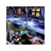 Anchor Aquarium Service Inc. is a Biological Installation Company